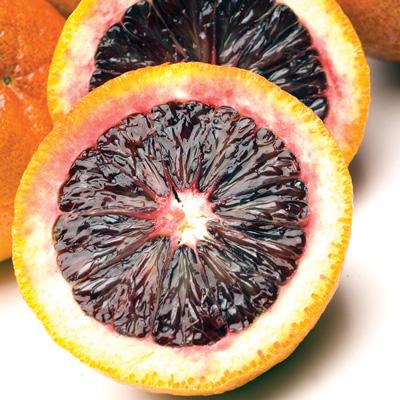 Moro Blood Orange (ส้มสีเลือด)