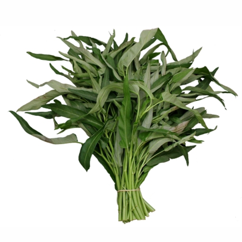 ผักบุ้งจีน - ซอง 50-100 เมล็ด