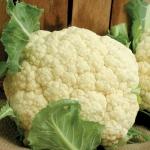 Snow Crown Cauliflower Conventional & Organic