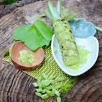 Plant-Wasabi (ต้นวาซาบิ)