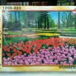 ภาพจิ๊กซอว์ 1200 ชิ้น Numbering Jigsaw Puzzle 1200 Pieces Size 75 x 50 cm.