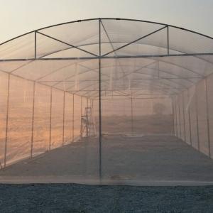 รับสร้างโรงเมล่อน5ขนาดพร้อมระบบให้น้ำ-ให้ปุ๋ย-พ่นยา(ทั่วประเทศ)