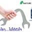 สมุนไพรหมามุ่ยอินเดียแคปซูล 30 เม็ด thumbnail 4