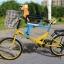 C10167 เก้าอี้นั่งเด็กสำหรับติดตั่งรถจักยานด้านหน้า ที่ก้ันสีดำแบบที่กั้นเต็มตัว thumbnail 3