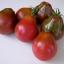 Trifele Tomato (มะเขือเทศญี่ปุ่น)