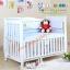 B10246 เตียงนอนไม้สำหรับเด็ก White Premium (WD4) thumbnail 1