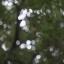 เลนส์มือหมุน Helios 44-2 58mm F2 M42 Mount s/n 83465759 thumbnail 13