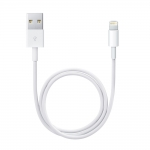 Apple Lightning to USB Cable (1.0 m) no Box