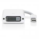 Apple Mini DisplayPort to DVI Adapter (No Box)
